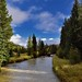 Blue Skies and Evergreen Trees to Enjoy the Colorado River (Rocky Mountain National Park)