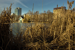 Welcome to Harlem Meer (sphaisell) Tags: meer lake pond newyork centralpark harlemmeer reeds house building welcomecenter viewfromthereeds view park