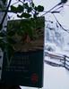 Premières neiges sur le mont Fuji (Grand-Pappà...) Tags: livre livres book books noslectures auvergne hauteloire hautesterres lobeç margeride marjarida massifcentral