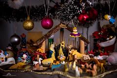 Tempo de agradecer... (mauroheinrich) Tags: espírito natal natalgaúcho natalcampeiro natalinos natalino presépio jesus meninojesus merrychristmas sentimento desejo paz esperança amor fraternidade igualdade humanidade nikon nikkor riograndedosul brasil ibirubá mauroheinrich