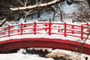 Bright Bridge on a Snowy Day (jasohill) Tags: color bridge nature iwate red shrine mystery contrast warm winter japanese forest photography life colors colorful 2017 hope japan snow