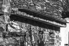 Baias Ibaia, Sarria, Zuia, Araba, Euskal Herria (Basque Country). 2016.12.29 (AnderTXargazkiak) Tags: baiasibaia sarria zuia araba euskalherria basquecountry baskenland ander andertxrekordseh andertxargazkiak txrekordseh zuriaetabeltza blancoynegro blackandwhite monocromático