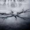 Freezing Over 008 (noahbw) Tags: captaindanielwrightwoods d5000 nikon abstract forest freezing frozen ice natural noahbw pond reflection square water winter woods landscape
