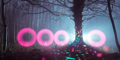 The Clearing (AndWhyNot) Tags: forest lightpainting longexposure mist 1708
