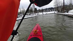 Jan 13 2017 (Kayaker Bill) Tags: sup standuppaddleboarding portlandoregon rossisland willametteriver oregon rivierapaddleboard winter2017 sonyas100v