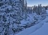 Soda Butte Creek (joycarl) Tags: sodabuttecreek yellowstone winter ice creek snow