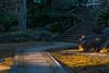 20170115-_DQH0028.jpg (ykgraph) Tags: sdquattroh sigma 50mmf14 foveon 東京 日本 tokyo japan sdquattro art æ¥æ¬ æ±äº¬