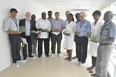 BoT members and cassava breeding unit (IITA Image Library) Tags: cassava manihotesculenta semiautotrophic hydroponic propagation