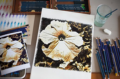 Something  has sprouted (kuburovic.natasa) Tags: drawing flowers creative art relaxing pleasure painting inspiration indoors