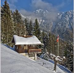 Swiss winter paradise, Paradis hivérnale suisse , Caux et  Les Rochers de Nays  . Canton of Vaud. No. 5974. (Izakigur) Tags: alps alpes alpen alpi swiss myswitzerland musictomyeyes switzerlnad dieschweiz d700 svizzera thelittleprince ilpiccoloprincipe vd vaud cantonvaud flag suiza suisia suïssa ch coldplay fixyou winter white chalet sunshine light frozen ice train goldenpass izakigur 2017 lhiver snow schnee nikond700 nikkor2470f28 nikkor