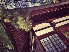 Tsukuji Temple (Jon-F, themachine) Tags: sun building apple architecture buildings temple rising structures cellphone temples   iphone  2015 jonfu iphone6  mobilephoneiphoneographysnapseednagoyaaichichubuchuubujapannihonnipponjapnjapoxapnasiaasianfar eastorientorientalland