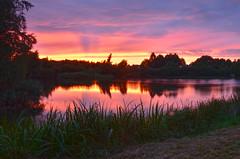 Sunset Rietplas (Rene Mensen) Tags: holland reflection rene thenetherlands drenthe emmen mensen rietlanden rietplas d5100
