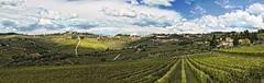 Colline del Chianti (bellinipaolo31) Tags: panoramica toscana paesaggio collina collinedelchianti pievedipanzano fc03911