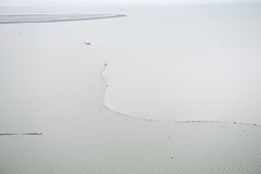 A US Coast Guard photo of a sheen of containment boom deployed after a collision between the Carla Maersk and Conti Peridot in the Houston Ship Channel in March 2015. (TradeWindsnews) Tags: coastguard us cg texas unitedstates spill collision oilspill uscg mtbe houstonshipchannel morganspoint padethouston stationhouston contiperidot carlamaersk