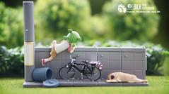 Yotsuba (Thai Toy Photographer) Tags: dog anime tree bicycle japan wall fun toys happy climb model outdoor sleep cartoon manga bin trading figure figurine figures pugdog yotsuba toyphotography toysstory