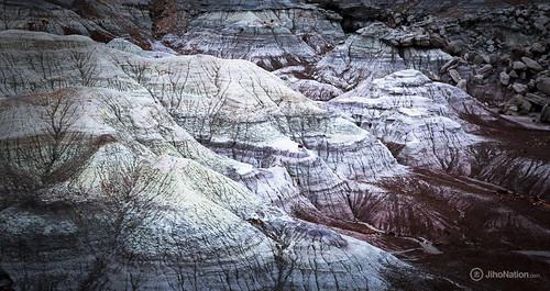 JihoNation-jiho-sohn-baltimore-photography-0011-IMG_8586 petrified-forest-arizona-national-park