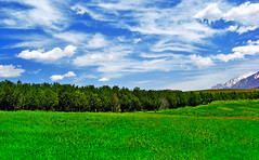 Memories of Green (Vafa Nematzadeh Photography) Tags: world life blue trees light white snow mountains green nature clouds landscape memories lawn future prairie nationalgeographic photooftheday natgeo vangelis irantourist memoriesofgreen thephotosociety kevinhaggith vafaphotography