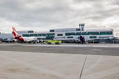 Qantas Airlines 13 (NickRoseSN) Tags: sf sanfrancisco california ca airport sfo aircraft aviation airline sanfranciscobayarea bayarea sfbayarea boeing airlines qantas boeing747 747 millbrae b747 sanfranciscointernationalairport sanmateocounty sfoairport sanfranciscoairport qantasairlines