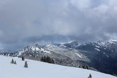 Snow on Hurricane Ridge (Oleg S .) Tags: olympic travel usa washingtonstate mountains snow
