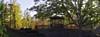 Upper Grove Gazebo in November (ForestPath) Tags: gazebo wooden sharonville cincinnati ohio usa november autumn colors sunshine rockwall railings fence lawn hill