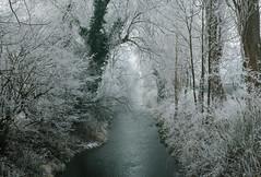 Winter Morning (drummerwinger) Tags: rot winter frost fehlbach erding canon700d sigma landschaft wasser eis ice
