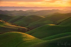 Endless Curves (Willie Huang Photo) Tags: hills bayarea northerncalifornia california rollinghills green bumps contours landscape nature eastbay northbay southbay scenic spring