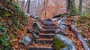 Stone Stairway- Great Smoky Mountains, TN (Angela D Beck) Tags: stone rock stairs steps fall autumn leaves orange green trees path tn tennessee greatsmokies moss 2014
