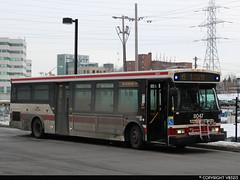 Toronto Transit Commission #8047 (vb5215's Transportation Gallery) Tags: ttc toronto transit commission 2007 orion vii