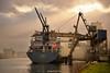 en chargement à Rouen (pontfire) Tags: diana imo 9370082 general cargo ship
