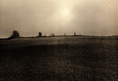 Oil and Bread / Weinviertler Horizont II (Spitting Doc) Tags: fujigsw690 lith silverprint bromofort forte weinviertel se5 omega mt2 oil wine bread