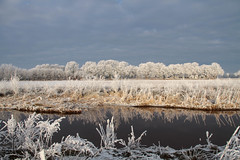 Winterwonderland (lique1304) Tags: landscpae winter snow field farmhouse water reflection outdoor nature cold freezing white blueskycanon7d westerwolde groningen