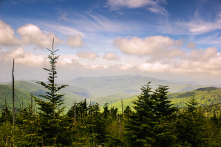 A View from Clingmans Dome
