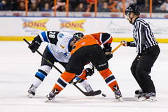 "Missouri Mavericks vs. Wichita Thunder, February 3, 2017, Silverstein Eye Centers Arena, Independence, Missouri.  Photo: John Howe / Howe Creative Photography • <a style=""font-size:0.8em;"" href=""http://www.flickr.com/photos/134016632@N02/32561326822/"" target=""_blank"">View on Flickr</a>"