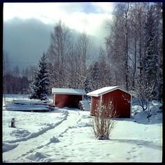 Winterland (Foide) Tags: winter winterland diana film 120 snow
