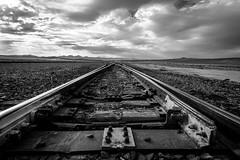 Somewhere in the Mojave Desert [Explored 8-22-15] (Eric Zumstein) Tags: traintracks bestcapturesaoi elitegalleryaoi aoi
