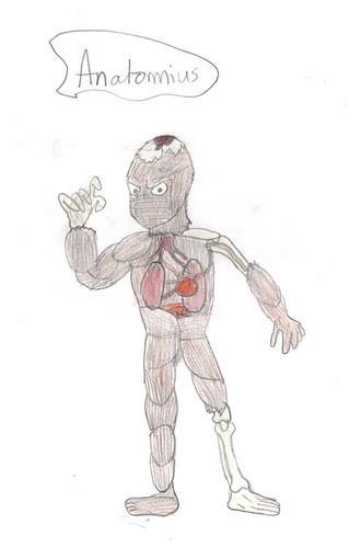Anatomius