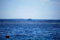 Ocean (hannah_bergmann) Tags: ocean nature water beautiful coral spain meer mallorca mittelmeer koralle aucanada nikond60 alcanada