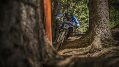 sam hill 81 (phunkt.com™) Tags: world mountain cup bike race hill keith down valentine downhill dh mtb uci lenzerheide 2015 phunkt phunktcom