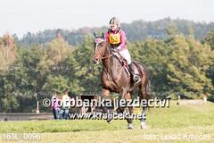 163L_0096 (Lukas Krajicek) Tags: military czechrepublic cz kon koně vysočina vysoina southbohemianregion blažejov dvoreček všestrannost dvoreek