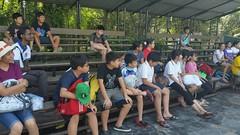 10.12.2015-AngloSingapore-BangPu-100 trees (2) (pattfoundation2014) Tags: thailand education mangrove treeplanting bangpu pattfoundation anglosingapore
