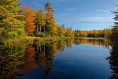 Fall Splendor (Malcolm Carlaw) Tags: water reflections landscape pond woods fallcolor outdoor ngc maine serene localcolor droh dailyrayofhope dailyrayofhope2015