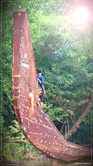 DSC_0108 (|| Nellickal Palliyodam ||) Tags: india race boat snake kerala krishna aranmula avittam parthasarathy vallamkali parthan palliyodam malakkara nellickal jalothsavam edanadu