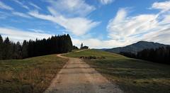 obn auf der Alm (Wolf Claudia) Tags: mountain nature way natur weg chiemgau