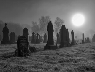 Cemetery Early Morning Mist