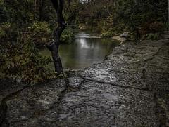 Better than the Mall (keith_shuley) Tags: park bullcreek rain rainy fall colors fallcolors austin texas olympus