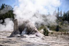 Giant Geyser (shutterdoula) Tags: yellowstone uppergeyserbasin