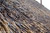 Regendruppels op rietendak (Thirza78) Tags: jol nature natuur regendruppels regen dak roof naturephotography brown bruin