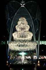 Sam Pollock Square Christmas Rings @  Allen Lambert Galleria, Brookfield Place, Toronto (A Great Capture) Tags: sampollocksquare allen lambert galleria brookfield sam pollock square yonge street building architecturallydetailed public spaces iconic design santiago calatrava place indoor agreatcapture agc wwwagreatcapturecom adjm ash2276 ashleylduffus ald mobilejay jamesmitchell toronto on ontario canada canadian photographer northamerica torontoexplore city downtown lights urban night dark nighttime eos digital dslr merry noël merrychristmas christmaslights festive ig