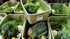 "csa boxes • <a style=""font-size:0.8em;"" href=""http://www.flickr.com/photos/75400798@N04/31601474303/"" target=""_blank"">View on Flickr</a>"