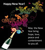 New Year greetings to my Flickr friends (tengds) Tags: newyear newyear2017 newyeargreetings black wine bottle swirls multicolored white tengds birds butterflies